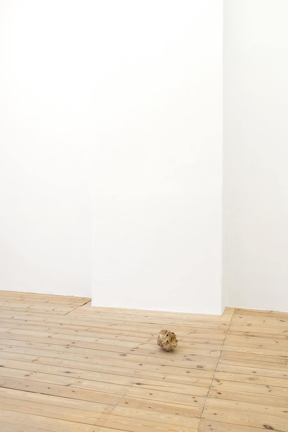 Ariel Schlesinger, Untitled (Inside Out Skull), 2014 (7)