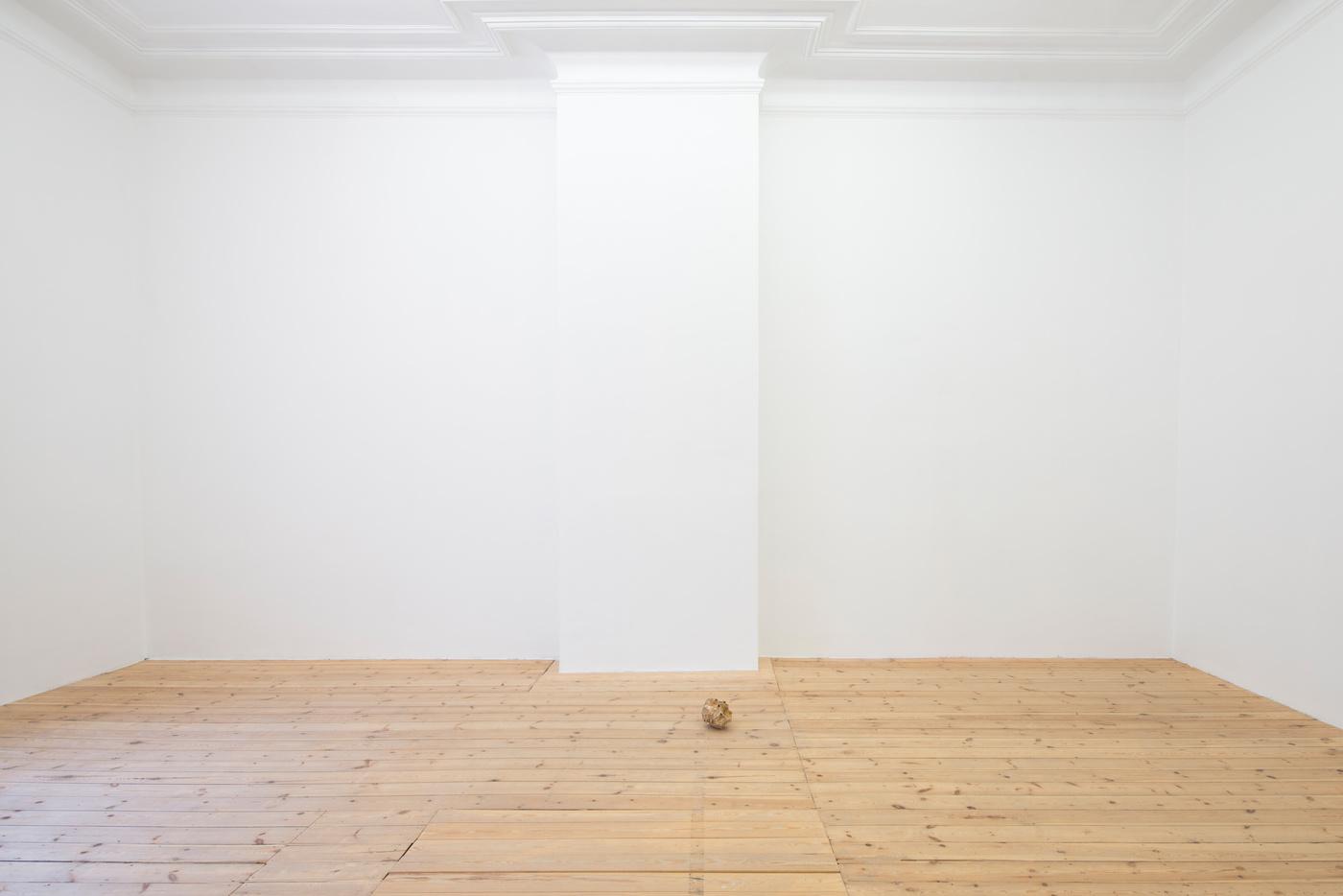 Ariel Schlesinger, Untitled (Inside Out Skull), 2014 (8)