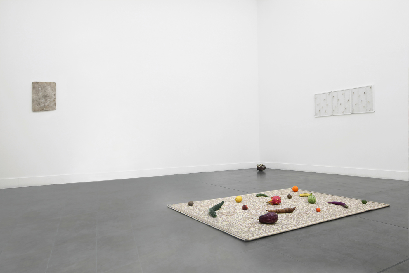 The structure of the wild (installation view) 05