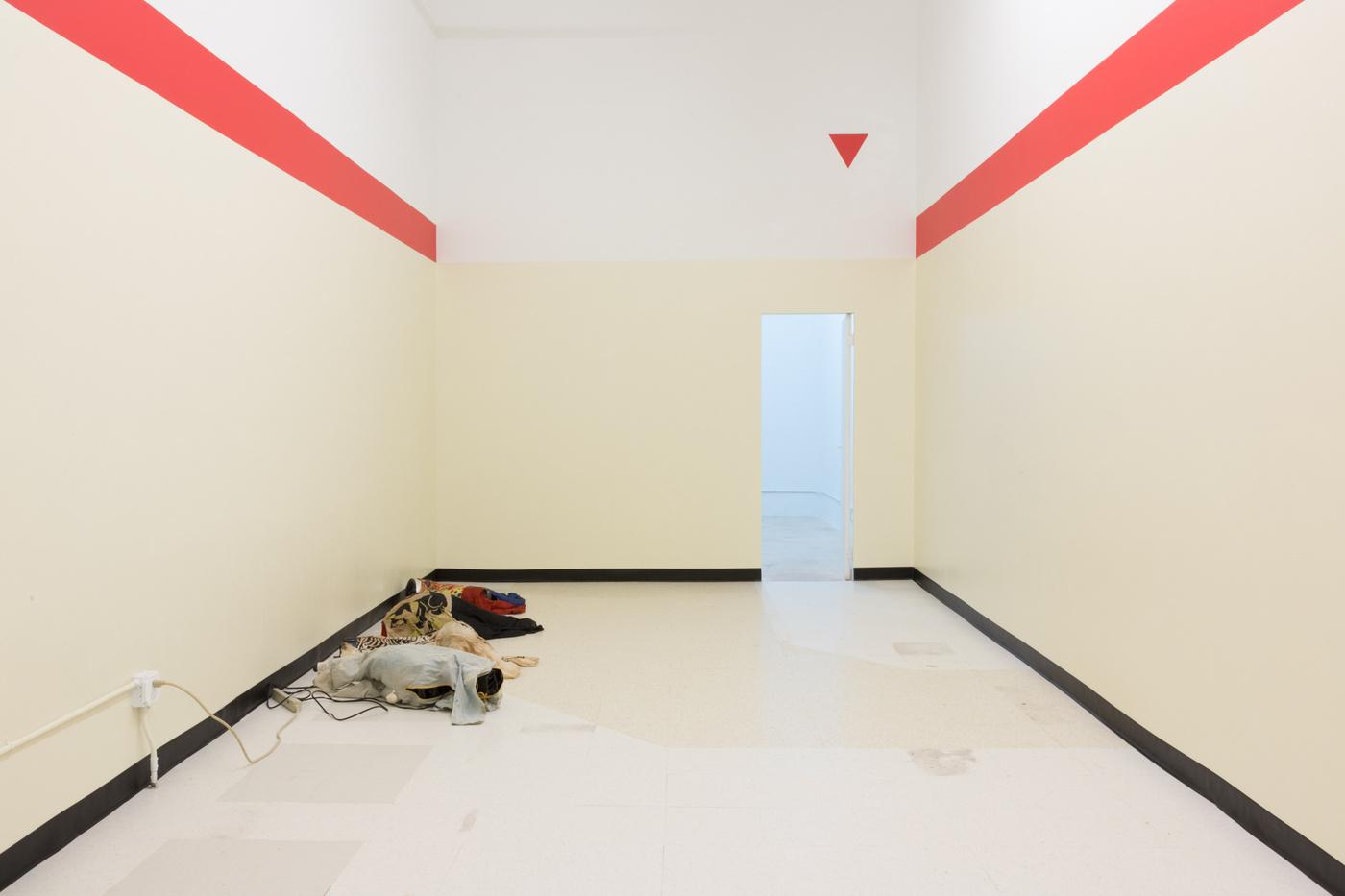Tony Hope_LILAC, 2016_installation view_PRS 1