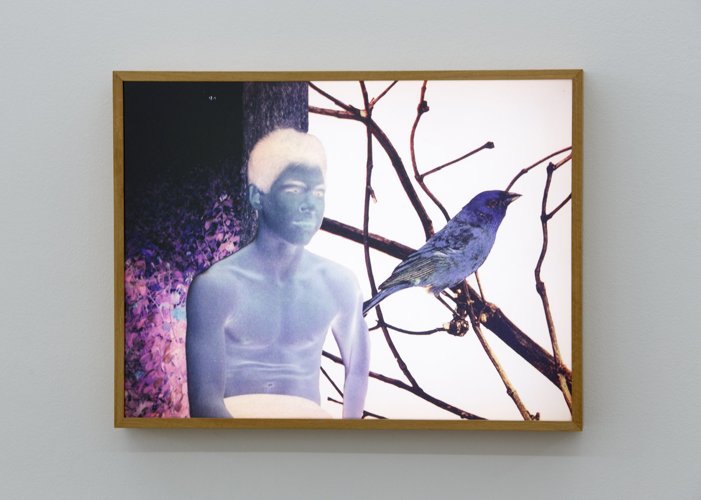 15. Ronit Porat, The boy with the blue bird, 2015