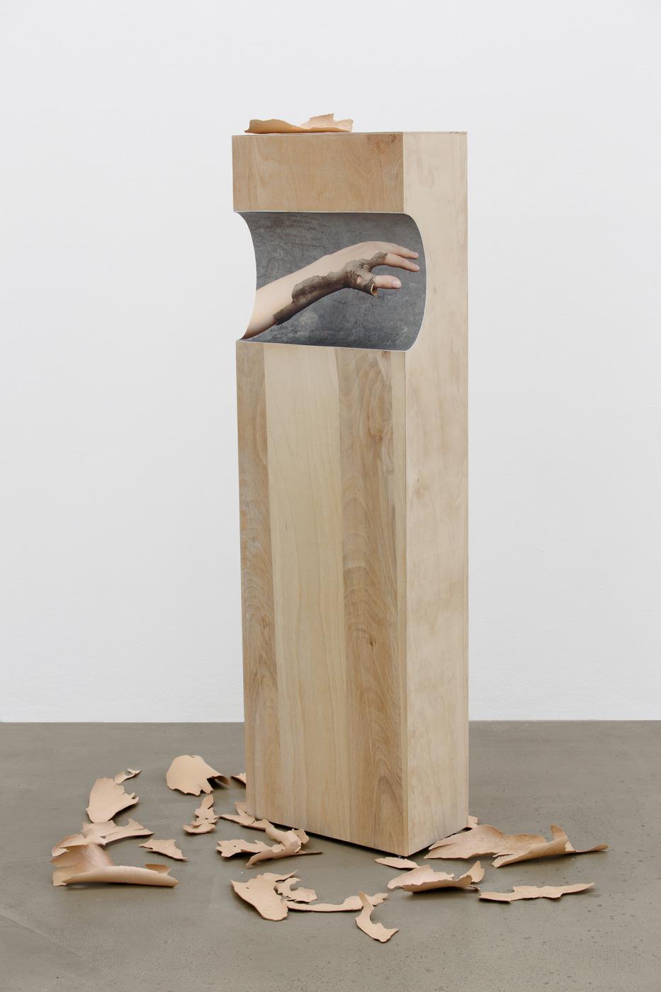 9. Nona Inescu, Gommage, 2016