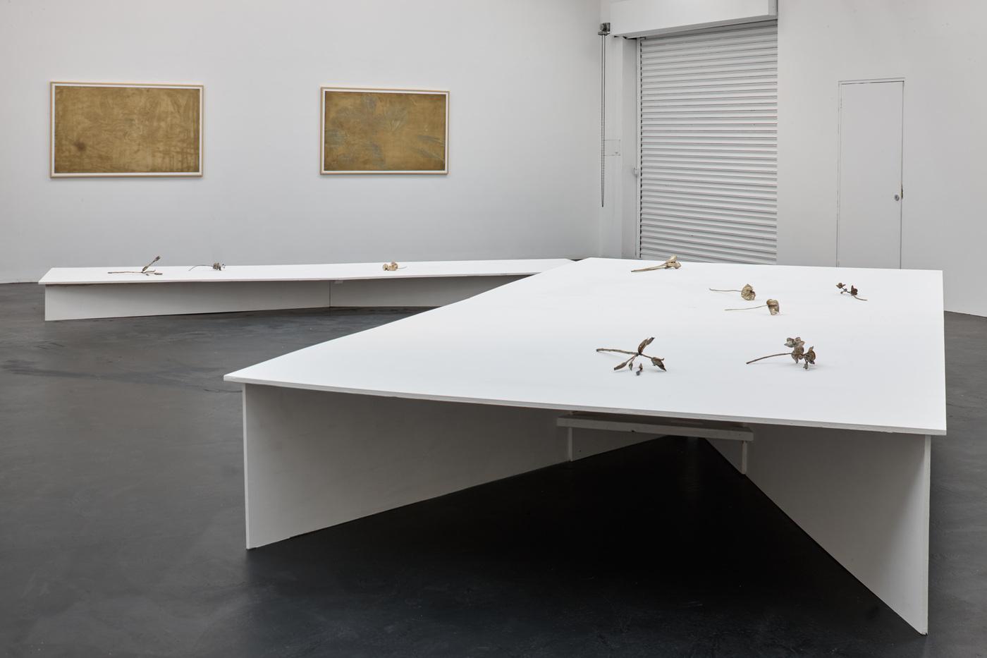 Ross Iannatti - Oro Valley - Installation View I