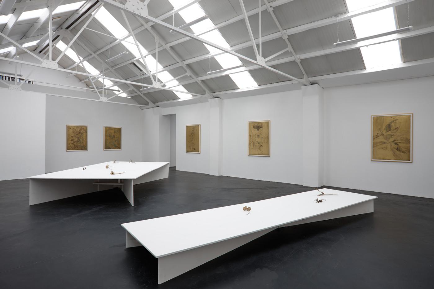 Ross Iannatti - Oro Valley - Installation View III