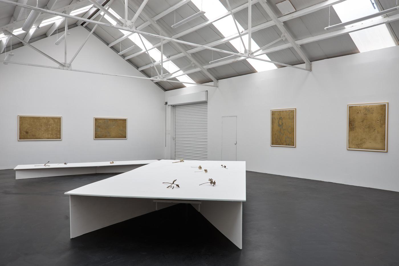Ross Iannatti - Oro Valley - Installation View IV