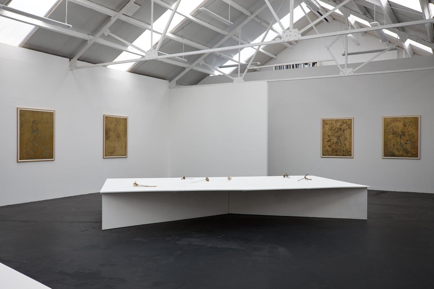 Ross Iannatti - Oro Valley - Installation View VII