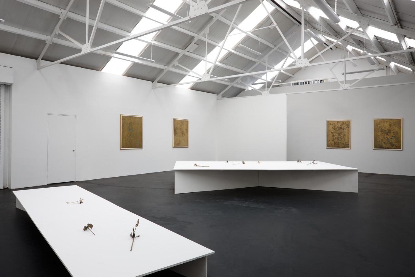 Ross Iannatti - Oro Valley - Installation View VIII