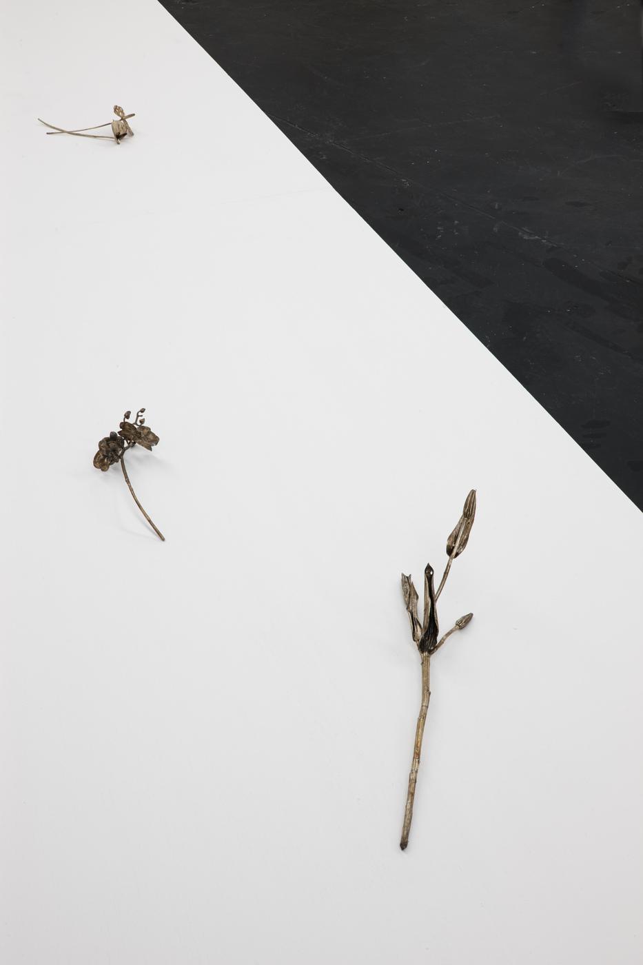 Ross Iannatti - Oro Valley - Installation View X