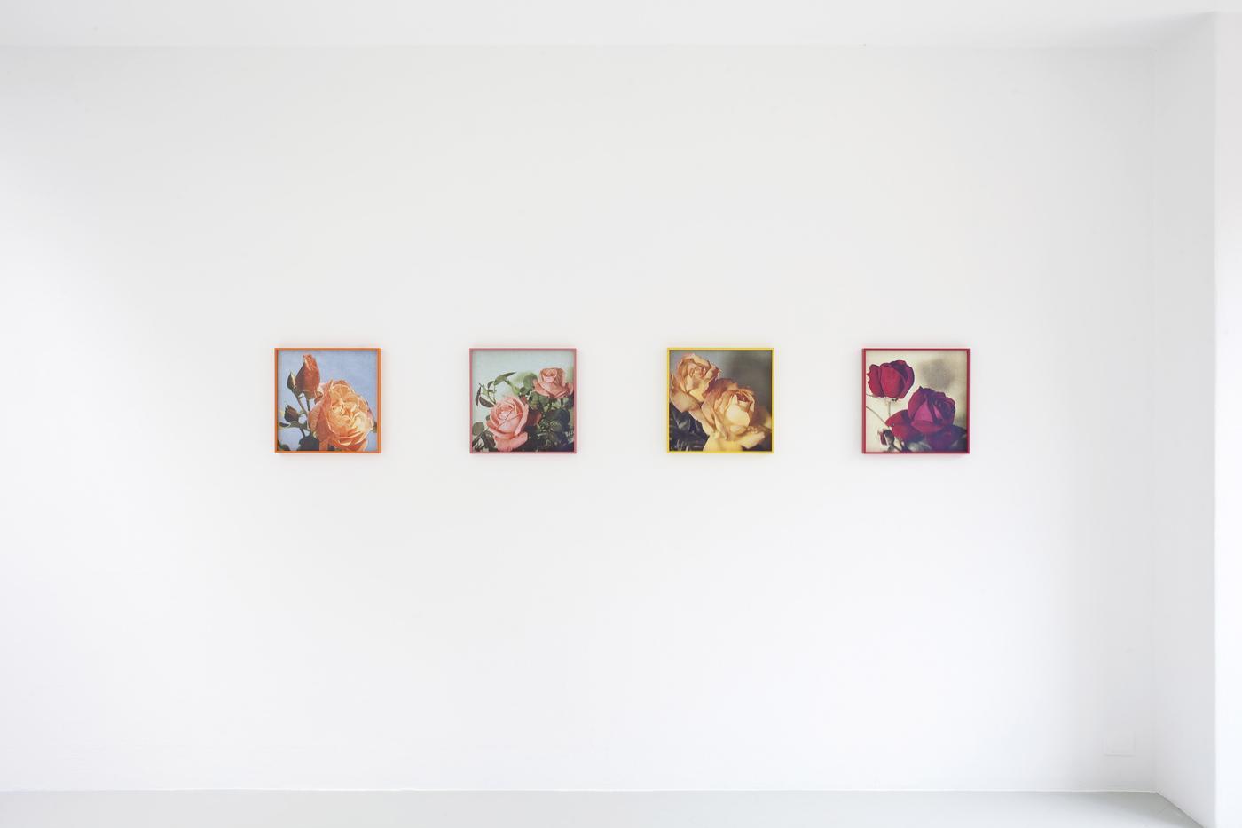 6 - Talisa Lallai, Loveliness Extreme,2016, Inkjet Print, each 41x41 cm - Courtesy Studiolo, Milan