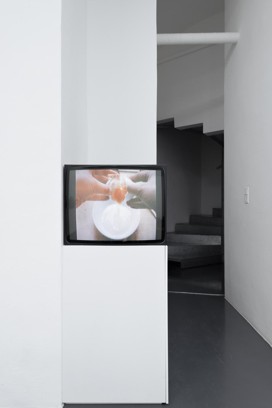 08_Installation view
