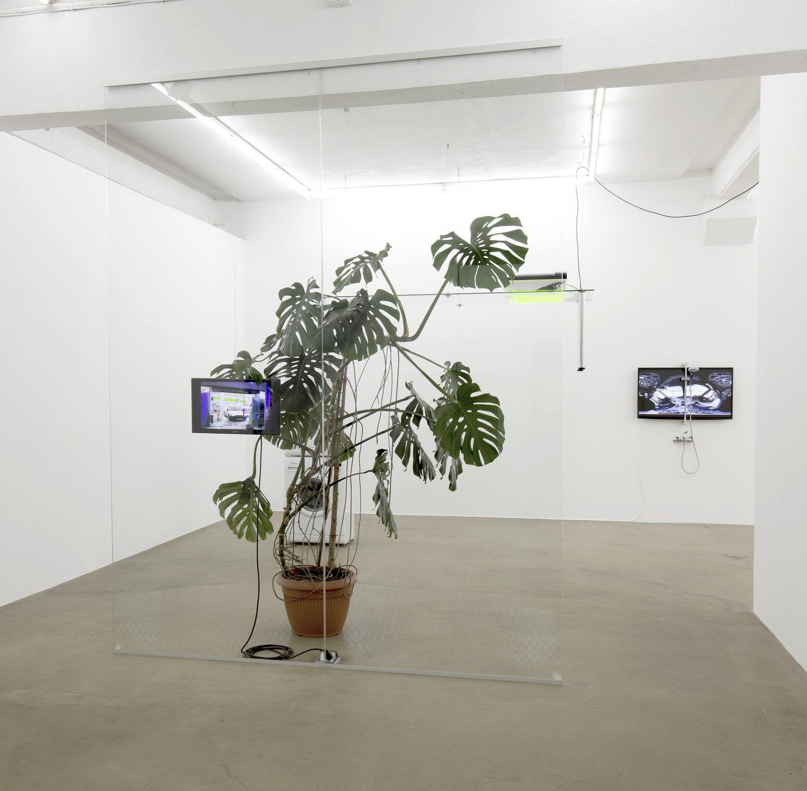 10. Pepo Salazar_exhibition view