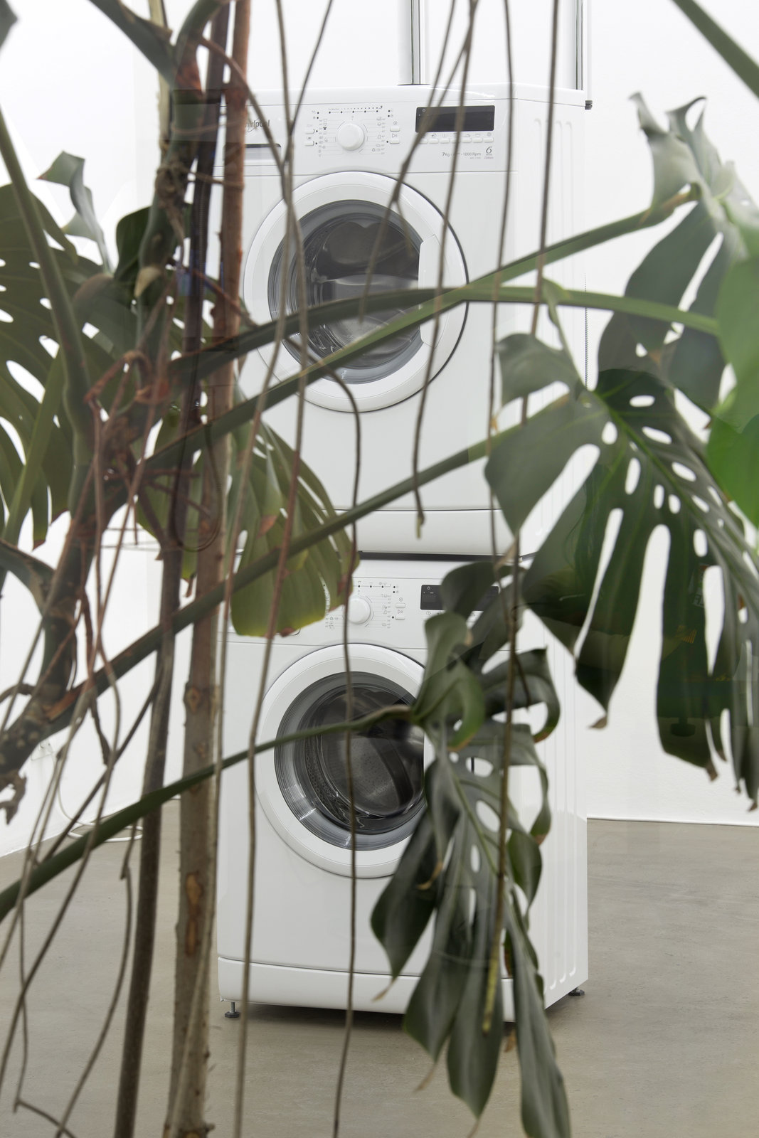 15. Pepo Salazar_exhibition view