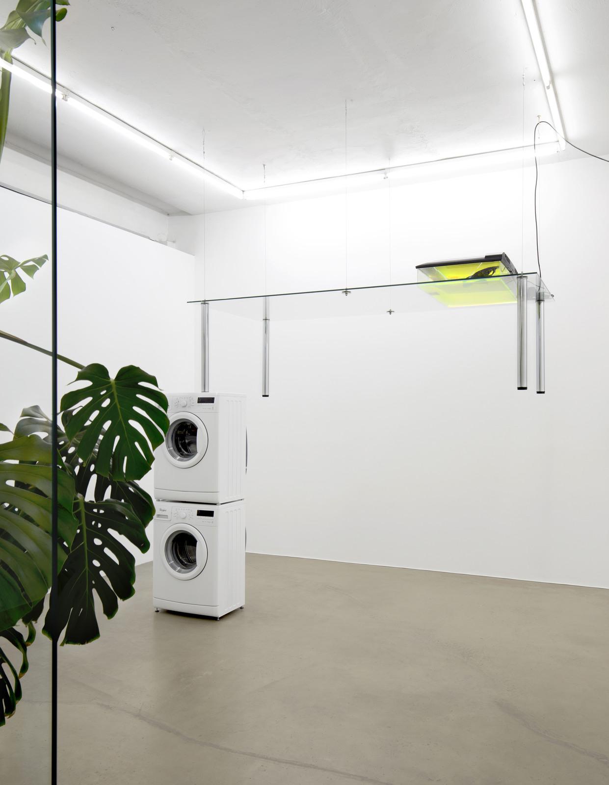 17. Pepo Salazar_exhibition view