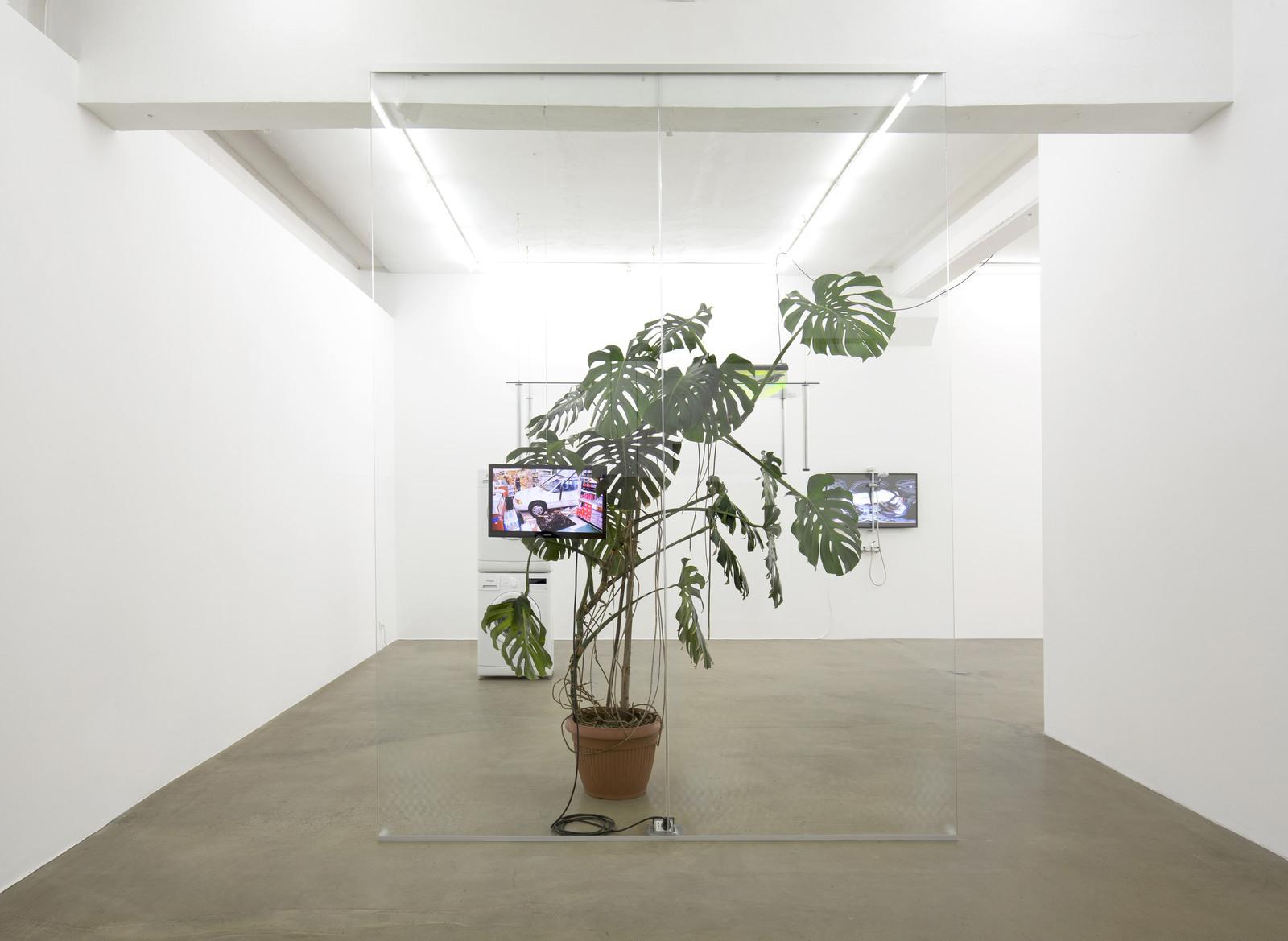 9. Pepo Salazar_exhibition view