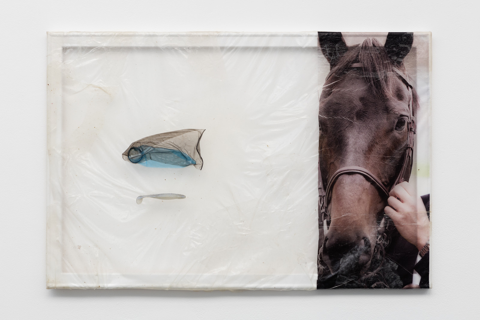 2.Aude Pariset. Stallion Dad, 2016. Bioplastic, UV print on bioplastic, condoms, fish bait, wood, paint. 60 x 90 cm