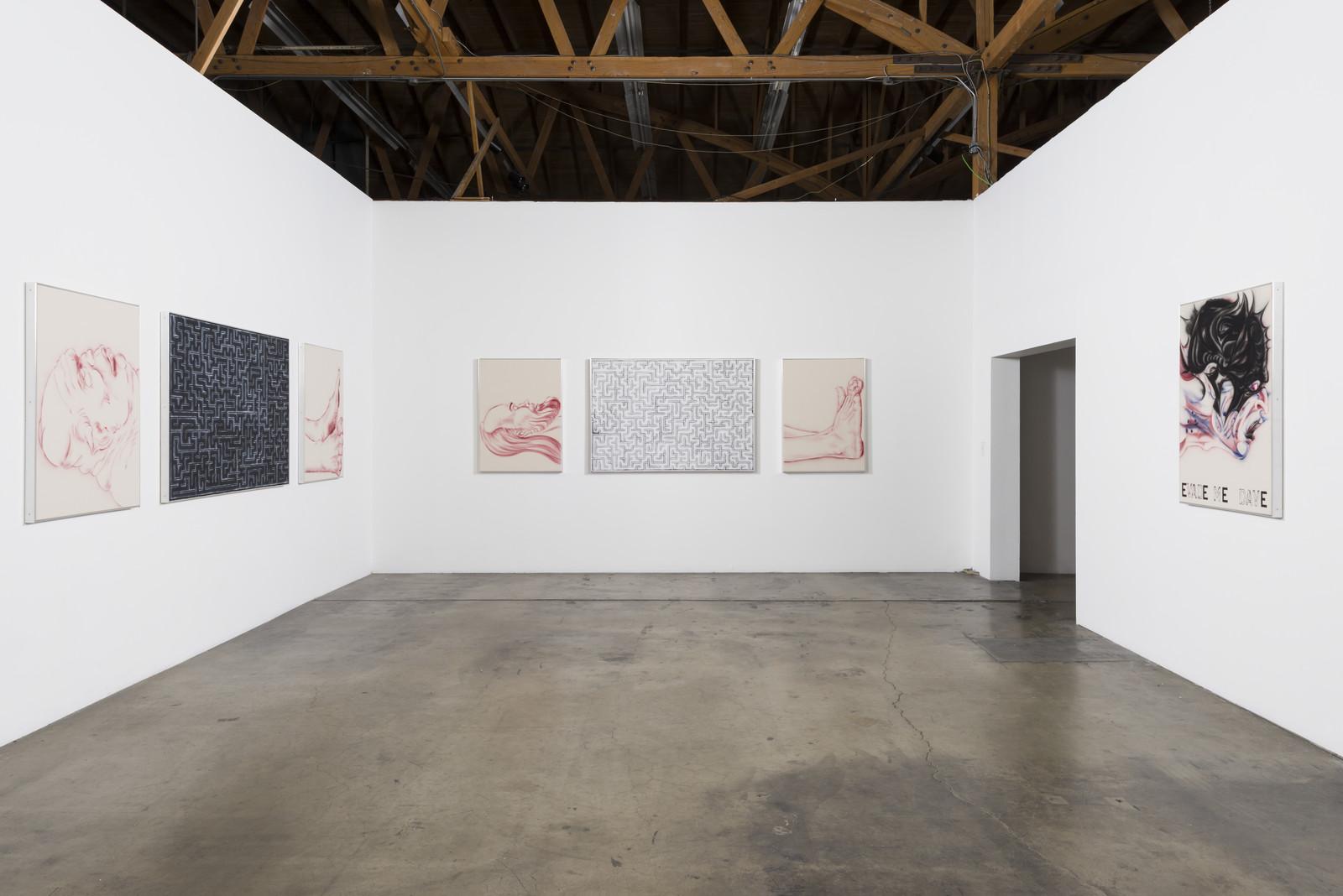 1_Installation View, Zoe Barcza, DR AWKWARD, Ghebaly Gallery
