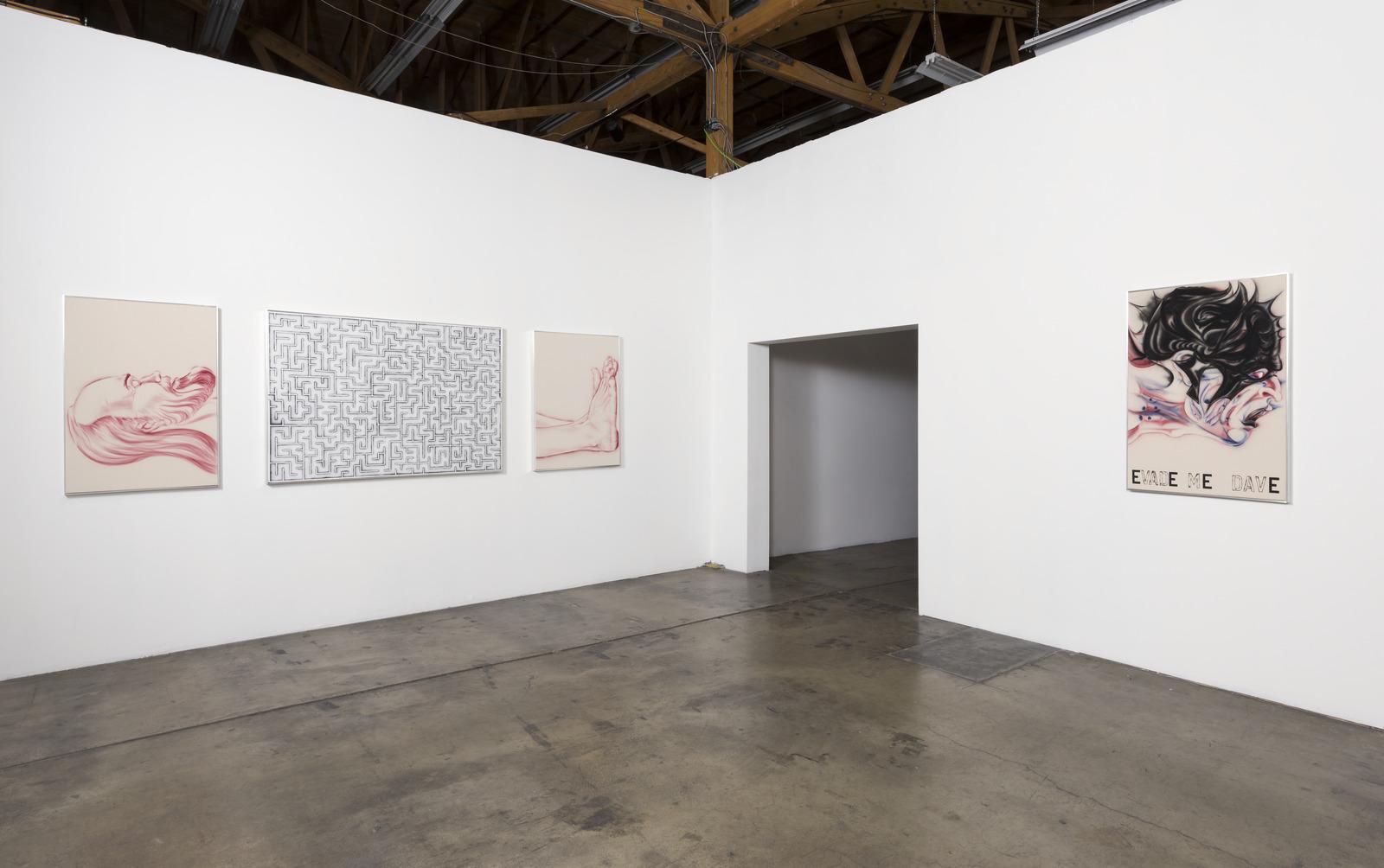 4_Installation View, Zoe Barcza, DR AWKWARD, Ghebaly Gallery