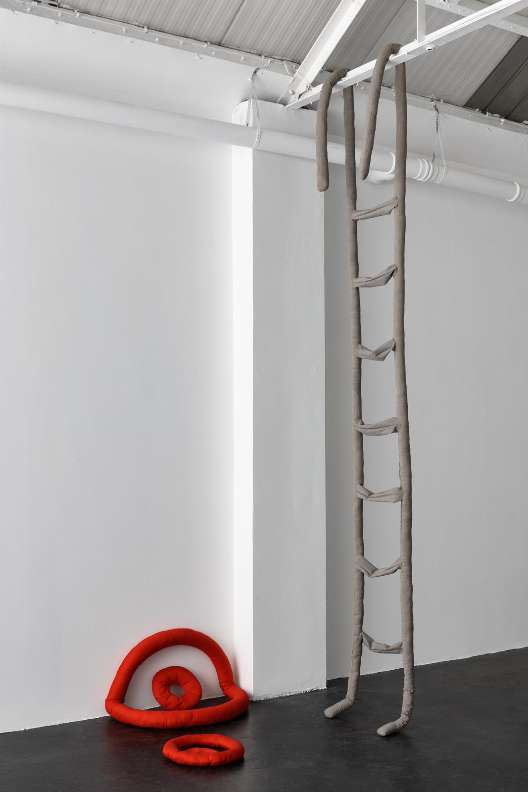 Anina Troesch - Ladder 1, 2014
