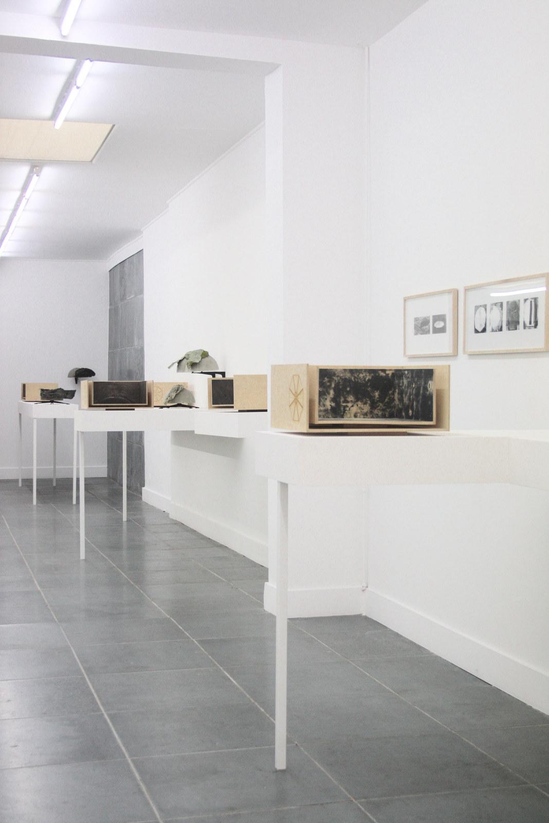 Katleen Vinck, Fractal, installation view