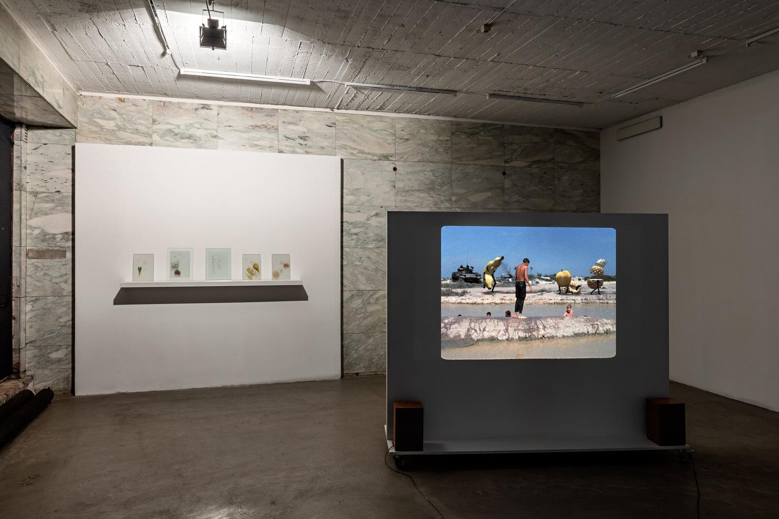 VI, VII-Benjamin Crotty at VI, VII, 2016-Exhibition view-Photograph by Vegard Kleven-Courtesy of VI, VII, Oslo