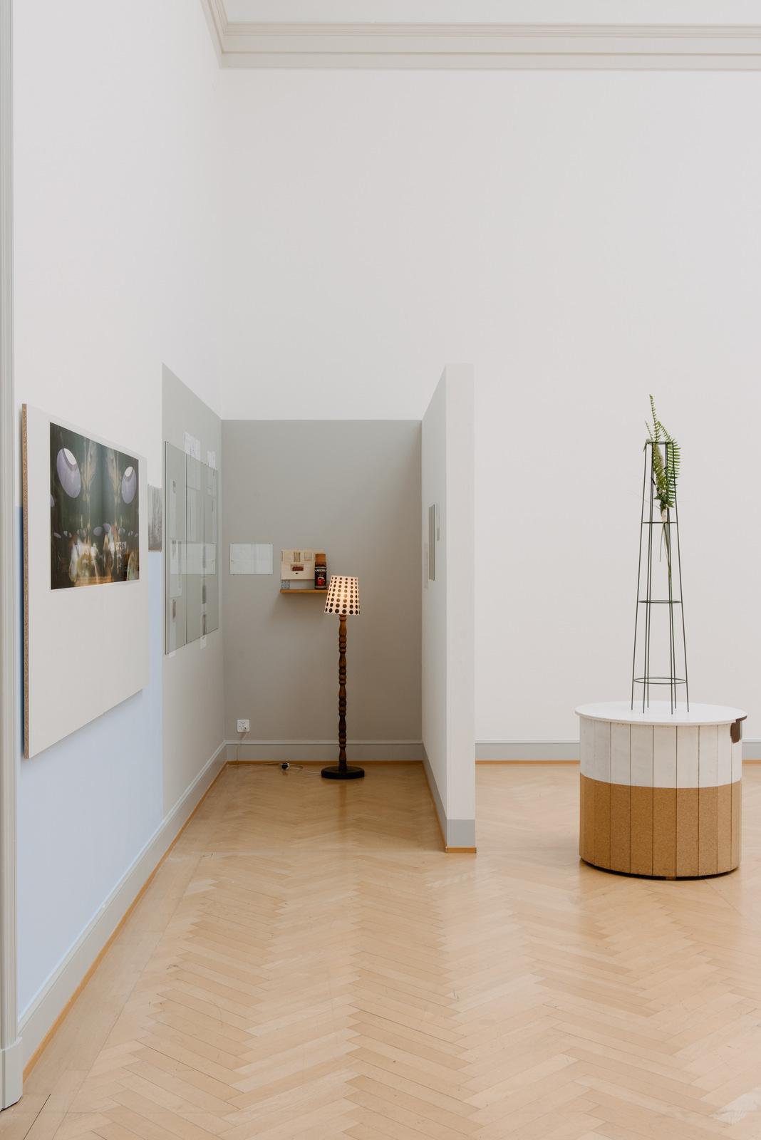 11_Installationsansicht_St.Gallen__Foto_Sebastian_Stadler