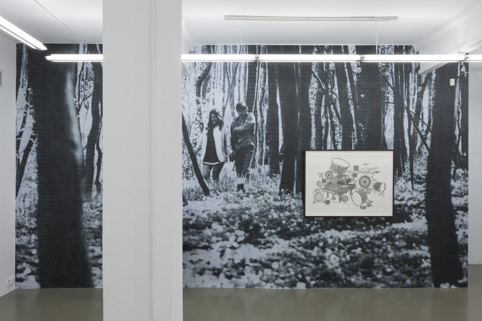 CS_Pareja alemana en un bosque_2016_print on the wall_variable dimensions_exhibition view 1