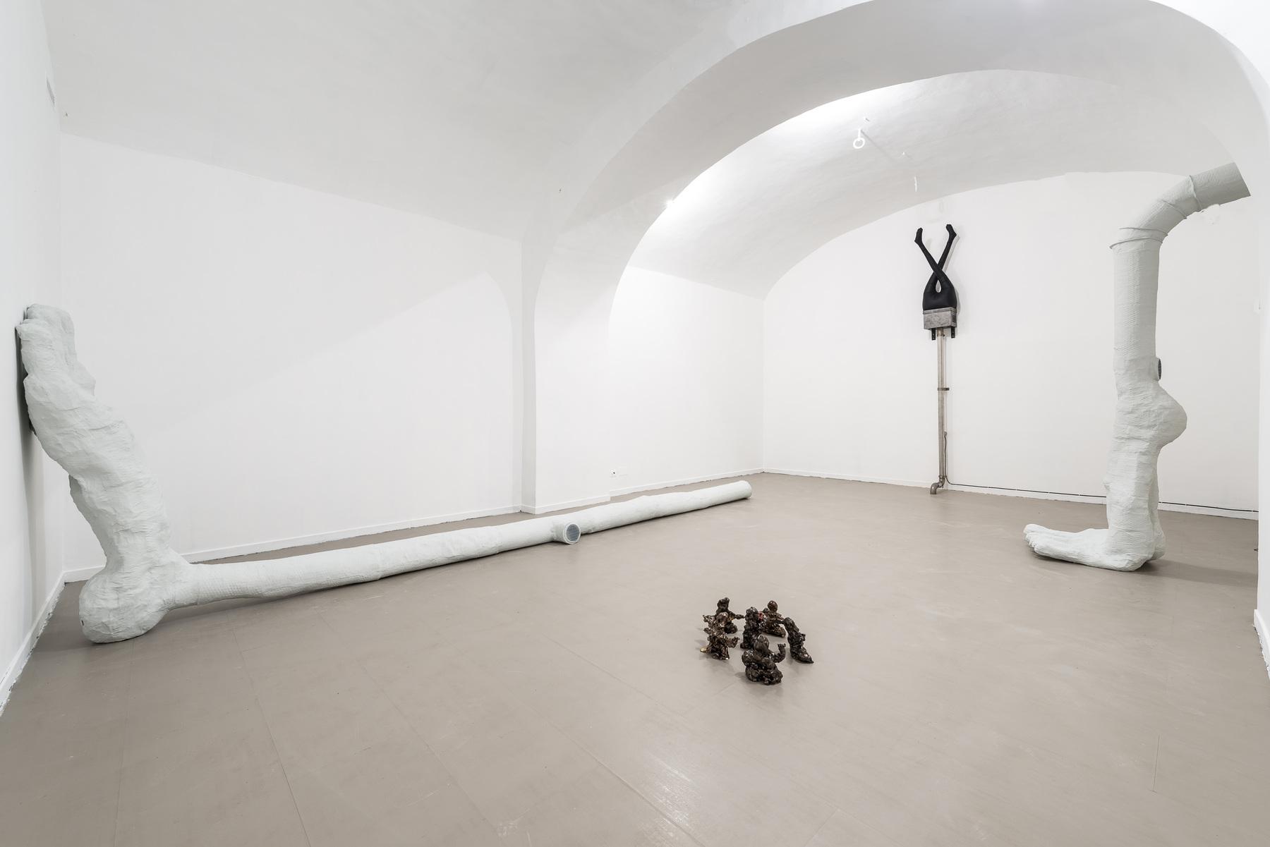 02_WalledGardenInAnInsaneEden_2017_InstallationView_Room3_z2oSaraZaninGallery_Roma