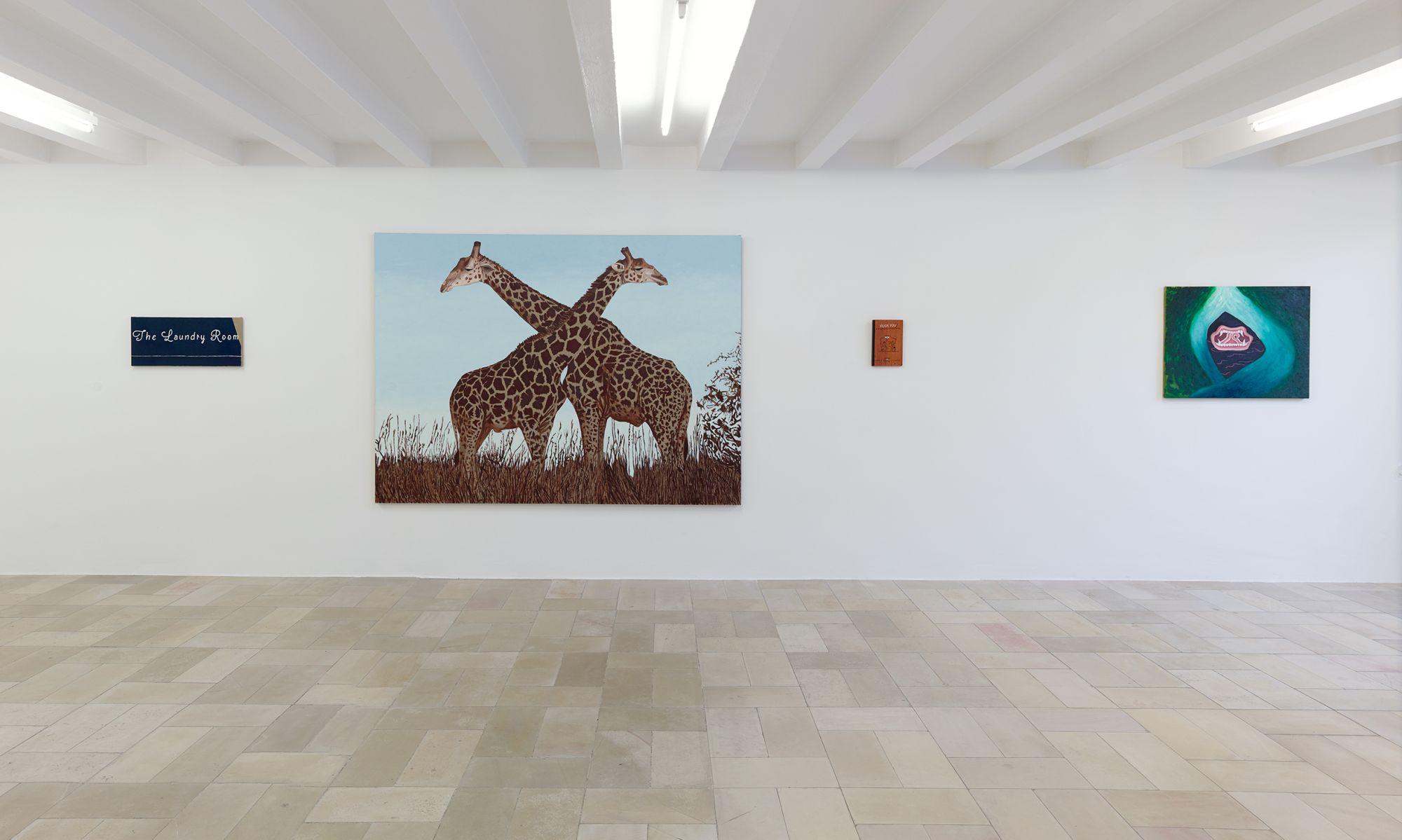 Installation view, Leidy Churchman - Free Delivery, Kölnischer Kunstverein 2017_Photo Simon Vogel_55_web