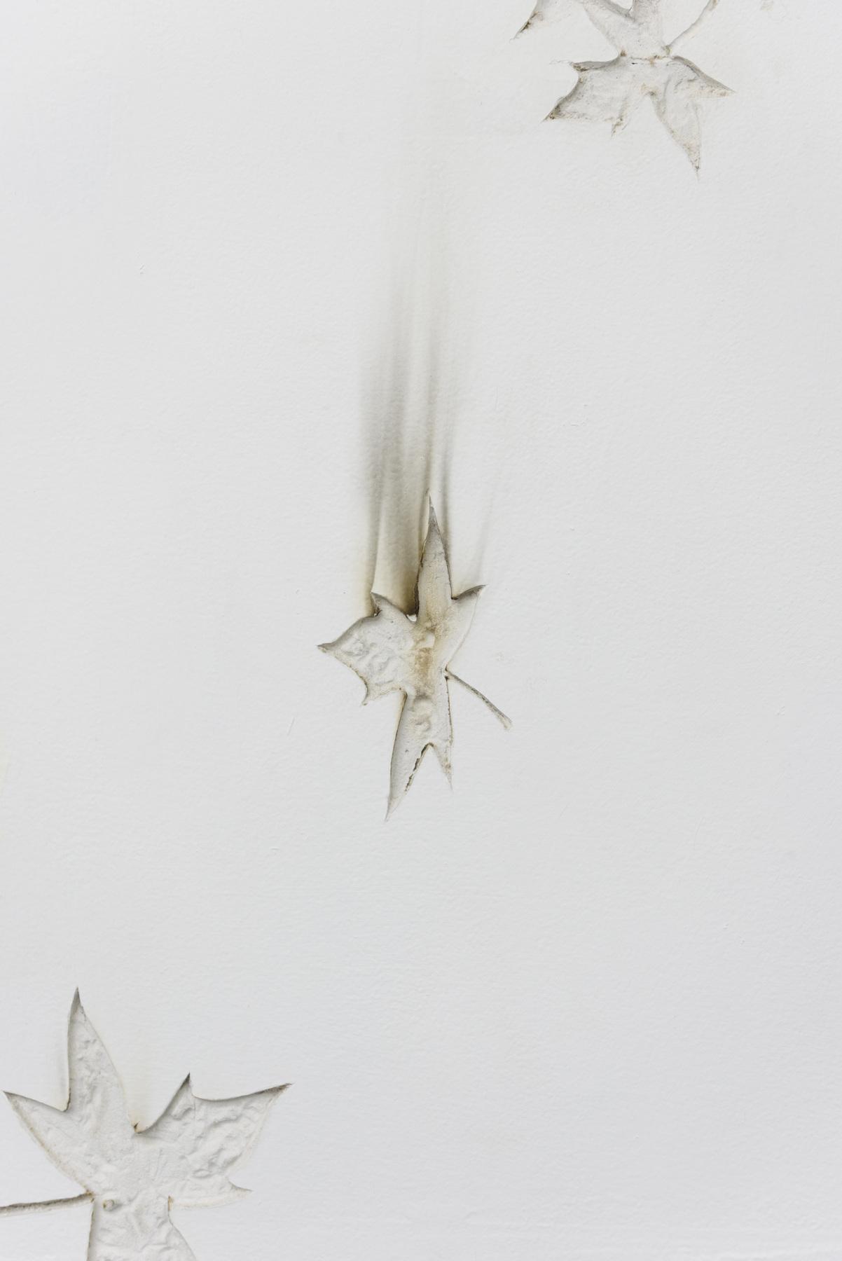 Michael Assiff-Ozone Flowers 14