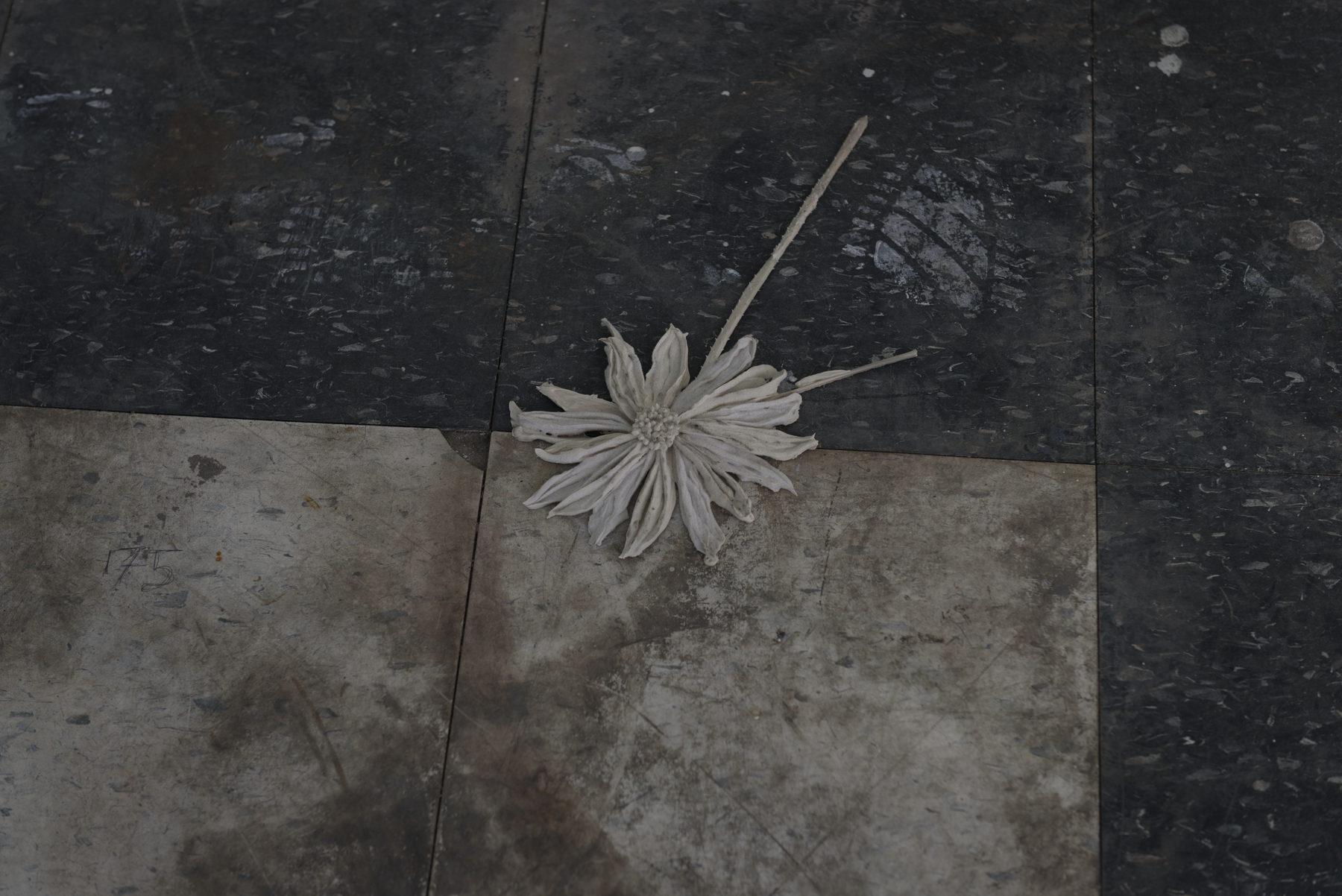 Michael Assiff-Ozone Flowers 30