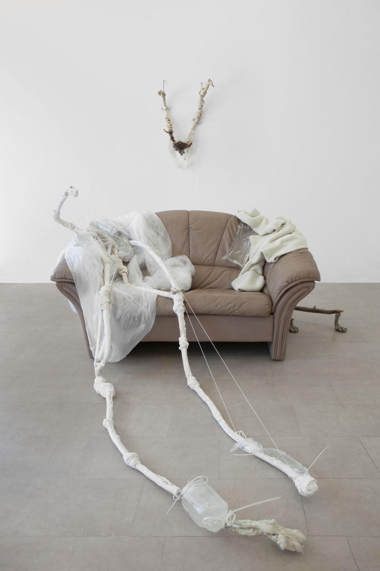 Monia Ben Hamouda at CC Gallery
